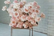 wedding decor // / Wedding decor ideas for the fun, modern bride curated by Truvelle