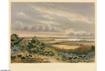 South Australia Illustrated / Images of South Australian scenes by various artists.