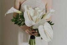 bouquets // / Bridal bouquets