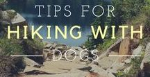 Hiking and Camping / Hiking, Camping, and All the Outdoorsy Things