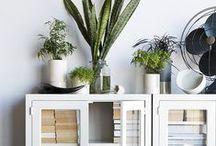 Display / Shop, display, and storage inspiration.