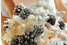 Wedding Ideas / Ideas for my wedding / by Kim Snyder