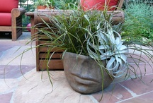 Creative Container Gardens / A melting pot of great container plantings, fantastic pots and unexpected designs.