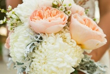 Wedding Ideas / by Shea Sullivan