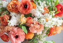 Flowers / by Helena Kingston