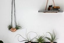 DIY / Big and small DIY projects.