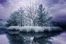 Winter Wonderland / by Mo Elizabeth