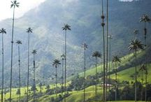 Colombia / Timeless colonial cities, thrilling Amazon adventures and rip-roaring festivals