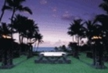 Maui Honeymoon Package Ideas / Unforgettable Honeymoons recommends a Maui Honeymoon for couples who love beaches, watersports, dining out, hiking, waterfalls & snorkeling. We offer Hawaii Honeymoon Packages and expert advice for planning a honeymoon to Maui.  Ask us for a FREE Hawaiian Honeymoon Planner- packed full of great ideas for planning a Hawaii Honeymoon.  Email us at info@unforgettablehoneymoons.com  (888) 343 6413 / by Unforgettable Honeymoons®