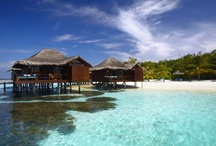 Overwater Bungalow Honeymoon Resorts / Looking for an overwater bungalow honeymoon?  Unforgettable Honeymoons knows all the best overwater bungalows, and can help you find the perfect overwater bungalow in Bora Bora, Huahine, Moorea, Tahaa, or the Maldives ( all the places you'll find these unique over the water luxury bungalows)  Want more information? email us info@unforgettablehoneymoons.com or call us toll free (888) 343 6413  / by Unforgettable Honeymoons®