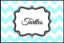 Turtles / by Dani