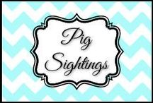 Pig Sightings / by Dani