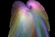 on Angel's wings....