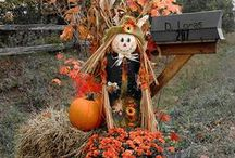 Fall Decorating / DIY and home decorating for Fall