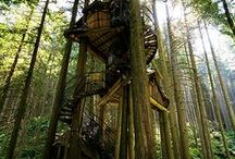 Awesome Treehouses! / Here are some great ideas for treehouses. And if you can't make your own they are brilliant to just look at.