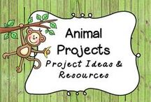 Animal Research Project / Kids LOVE animals!  Check out these ideas for Animal Research Projects!   This board includes resources and ideas for unique projects!