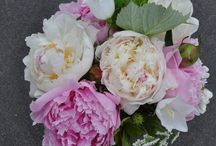 Spring Wedding Bouquets / Bouquets that we have created for our brides over the years.