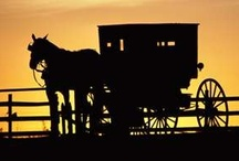 Amish Flair / I live in the Ozarks of Missouri and you're pretty hard pressed to go anywhere without seeing a horse and buggy around here. I also live in a cabin that was built by the Amish. I love everything Amish and here is a place to share it with my followers.