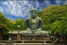 Japan/Korea Trip / by Lauren Began