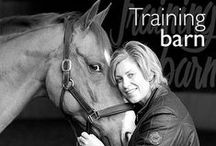 Training Barn / The Training Barn - behind the scenes of #photography training in Hampshire.
