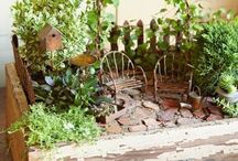 Box Gardening / huertos urbanos