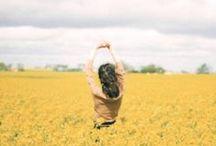 colour / yellow