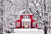 Winter Wonderland / Beautiful winter photography
