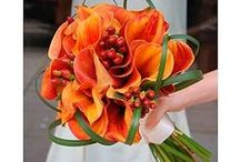 Orange Wedding Flowers / What is more dramatic for a wedding than orange flowers - sometimes alone and sometimes with other colors. Most of this is our work but we might pin something we really admire from another designer! www.perfectweddingflowers.com  / by Monday Morning Flower and Balloon Co