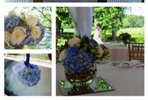 Blue Flowers / Blue flowers - I love them. Sometimes they are blue naturally and sometimes we help them but all are super cool. www.perfectweddingflowers.com