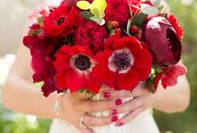 Red / Would you like a Fabulous Red Wedding?