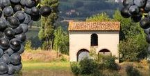 Tuscany / The perfect place for your wedding!