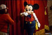 Must Do's at Disney World
