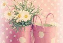 Il mio mondo tutto rosa