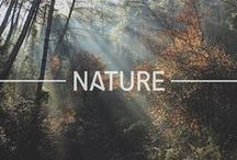 Nature Walk. / Go outside and take a walk.  Explore nature as you go!
