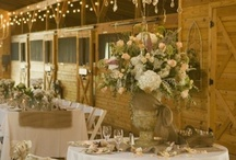 Table Setting / by Cathy Coker