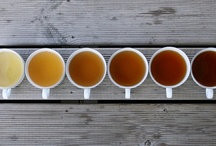 coffee or tea / Coffee, tea, coffee cups, illustrations etc.