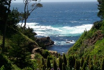 My Northern California, Places to go / by Debra Taylor