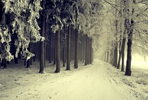 .winter.
