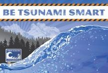 Tsunami Preparedness / Tsunamis are a rare but real threat for BC. That means those of us living in a tsunami zone need to be prepared, both with knowledge and a 72-hour kit.