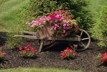 Gardens to Decorate / by Sara Kaiser