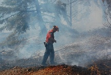 Fighting Wildfire in B.C.