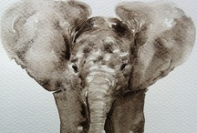 elephants! / by Sarah Matchette