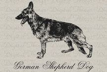 I <3 German Shepherds / by Debi Faulkner