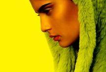 Colour / by Greg Quinton