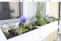 Outdoors / Everything you need to turn your yard, porch, and patio into an outdoor haven. Check out these amazing gardening ideas, patio updates, porch decor and upgrades, and general lawn care tips and tricks!