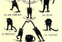 kitten fun / by Penelope Singer