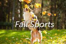 Fall Sports / by Hartz
