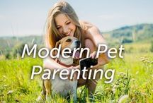 Modern Pet Parenting / A place to share tips for modern pet parents and their companions!