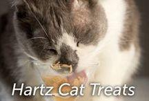 Hartz Cat Treats / by Hartz