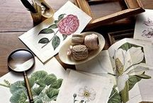 lovely things / by Jamie Lynn